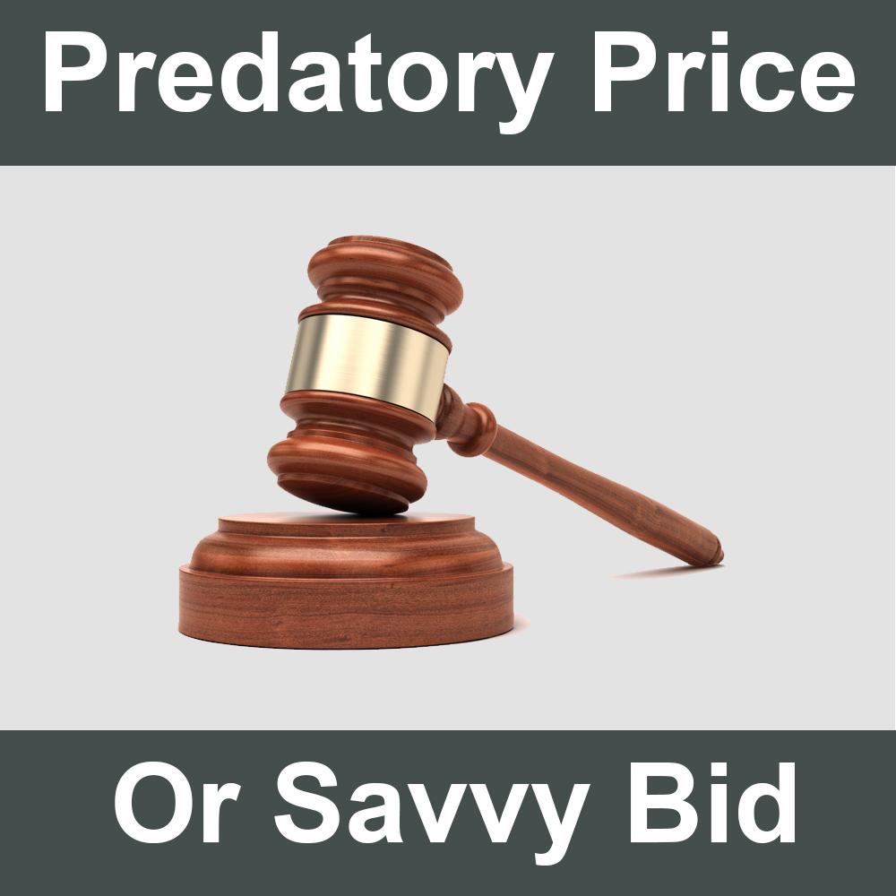 Predatory Pricing or Savvy Bidding?